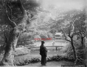 複製復刻 絵葉書/古写真 東京 王子滝野川の紅葉 明治期