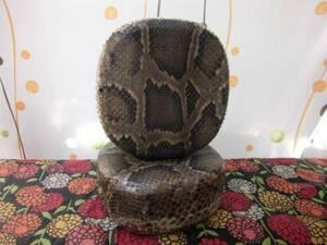 (送料無料)、11.500円 沖縄三線専チーガ蛇皮強化(二重張)型(胴)と胴巻を選択