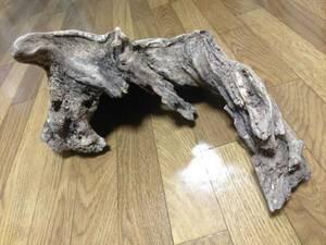 素材 ビバリウム テラリウム バルタリウム フィギュア 苔 朽木 シャビー 苔アート コウモリラン ビカクシダ 多肉植物 爬虫類 チランジア