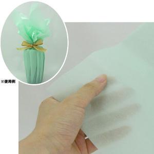 60枚まで送料180円 【薄葉紙】 20枚 ライトグリーン 包装 洋服 靴 包装紙 薄い紙 ラッピング
