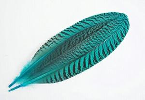 高品質!ピーコッククイル 1ペア(2本入り)【ブルー】フライマテリアル・フェザー・鳥の羽根・毛針・毛鉤・タイイング 装飾用にもどうぞ!
