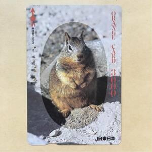 【使用済】 オレンジカード JR東日本