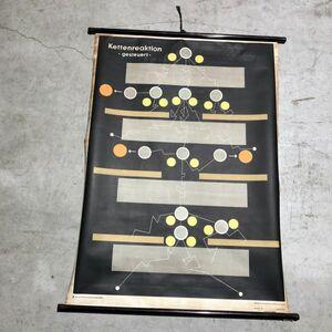 VINTAGE GERMAN CHART ビンテージ メディカル チャート インテリア DESIGN デザイン ドイツ製 壁掛け アンティーク 美品 掛け軸 アート