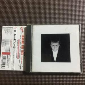 ピーター・ガブリエル シェイキング・ザ・トゥリー/グレイティスト・ヒッツ 国内盤帯付き CD