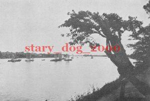複製復刻 絵葉書/古写真 東京 向島より隅田川を望む 明治40年 TS_330