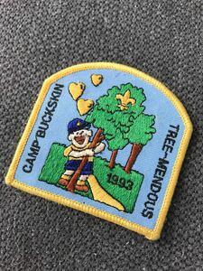 デッドストック ヴィンテージ ワッペン 子供 キャンプ リメイク ハンドメイド 手作り 小物 雑貨 インポート アメリカン 古着屋 パッチ 定番