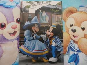 即決☆新品未使用☆限定 東京ディズニーシー ミッキー ミニー 実写 ポストカード 2018♪TDR TDL35周年 TDS