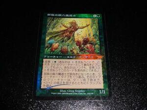 FOIL/部族の腕力魔道士/Tribal Forcemage/日本語版/MTG1枚
