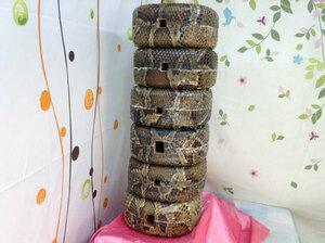 (送料無料)52.000円 沖縄三線専用 蛇皮強化(二重張)型チーガ6個胴巻き付セット 自作へ又は業者様対応