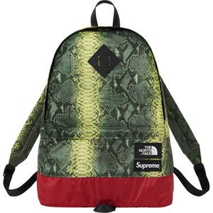 Supreme × The North Face 18SS Snakeskin Lightweight Day Pack Green オンライン購入 半タグ付 緑 バックパック デイパック リュック