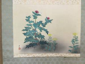 [   ширина  гора  большой  Смотри   ]            поле     из     цветок  [   ...   ]   шелк  это   Несколько  произведено  Фото            Ничего  земля  Kiri  коробка          NO 209 над A