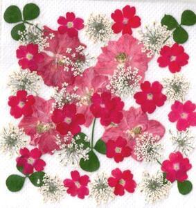 [ L ta вдавлено цветок почтовый заказ ] розовый серия вдавлено цветок дизайн упаковка