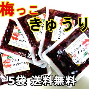 梅っこきゅうり 5袋 送料無料 宮崎のきゅうりと紀州南高梅のコラボ ご飯のお供 行楽弁当 おにぎり 混ぜご飯 お茶漬けの具に おかずに