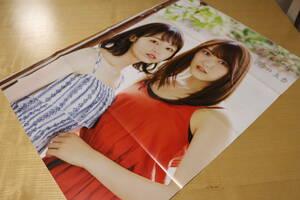両面ポスター 欅坂46 今泉佑唯 菅井友香 AKB48 白間美瑠