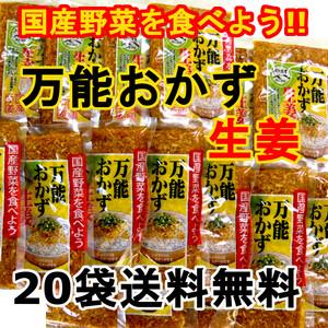 万能おかず生姜 20袋 パパッと混ぜて簡単便利 きざみ生姜の醤油漬け ご飯のお供 色んな料理の薬味に 宮崎県産生姜使用 送料無料