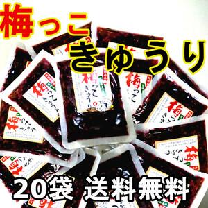 梅っこきゅうり 20袋 送料無料 宮崎のきゅうりと紀州南高梅のコラボ ご飯のお供 行楽弁当 おにぎり 混ぜご飯 お茶漬けの具に おかずに