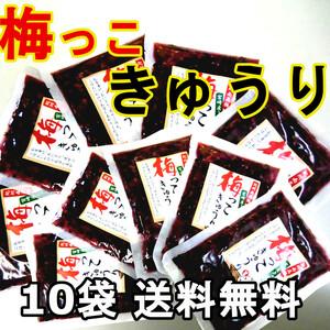 梅っこきゅうり 10袋 送料無料 宮崎のきゅうりと紀州南高梅のコラボ ご飯のお供 行楽弁当 おにぎり 混ぜご飯 お茶漬けの具に おかずに