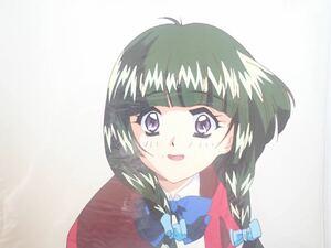 5153 下級生 アニメ セル画