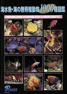 海水魚・海の無脊椎動物1000種図鑑/サイエンス(その他)
