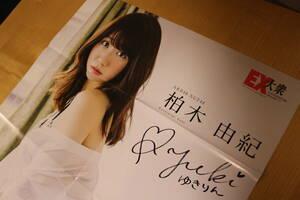 ポスター AKB48 柏木由紀