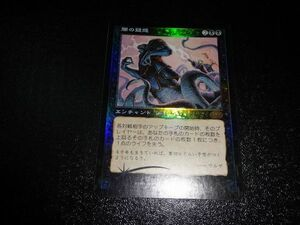 FOIL/闇の疑惑/Dark Suspicions/プレーンシフト/日本語版/MTG1枚