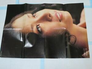 大特価! レア! 珍品! 1970年代 小柳ルミ子 野口五郎のポスター