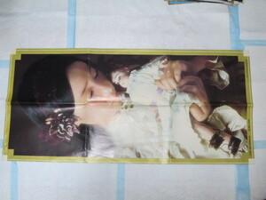 大特価! レア! 珍品! 1970年代 アグネス・チャン 郷ひろみのポスター