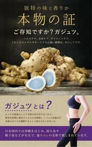 ヘルス 美容 ダイエットをマルチにサポート ガジュツ 約1ヵ月分 健康グッズ