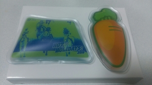JRA エコカイロ オジュウチョウサン 中山グランドジャンプ HOT HOLIDAYS 来場ポイントキャンペーン 競馬