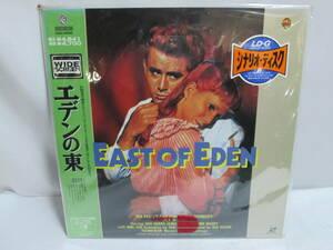 k1555 レーザーディスク LD-G エデンの東