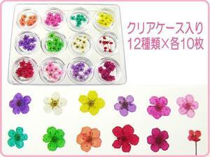 засушенный цветок сухой цветок 12 вид комплект [B] ручная работа аксессуары UV resin детали материалы /21Ч