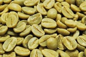 【10㎏】コーヒー生豆 ブラジル アロマショコラ コーヒー プレミアム 自家焙煎 こだわりコーヒー アロマ カフェ 送料無料