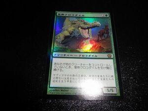 FOIL/皇帝クロコダイル/Emperor Crocodile/8版/日本語版/MTG1枚