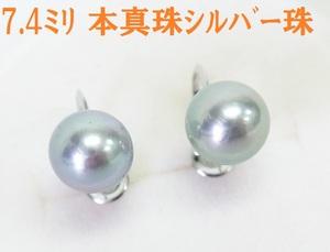 送料込みの即決価格 国産アコヤ本真珠 7.4mm シルバーグレー珠 18金ホワイト製イヤリング 卸価格でご奉仕