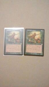 mtg 部族の腕力魔道士 2枚セット 日本語版