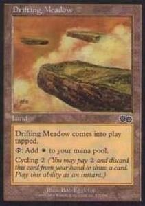 025221-002 US/USG 漂う牧草地/Drifting Meadow 英2枚