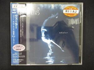 001 レンタル版CD ウェーラー/ソフィーB.ホーキンス 【歌詞・対訳付】 612140