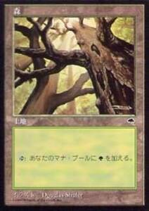 020331-008 TE/TMP 基本土地 森/Forest(1) 日1枚
