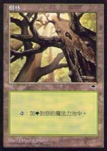 020331-044 TE/TMP 基本土地 森/Forest(1) 中1枚