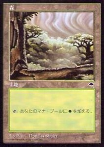 020333-008 TE/TMP 基本土地 森/Forest(3) 日1枚