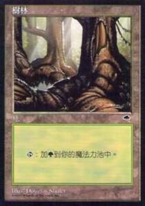 020334-044 TE/TMP 基本土地 森/Forest(4) 中1枚