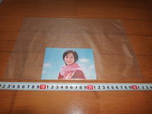 ショーレックス 六切 写真袋  6PW ワイド六つ切用 1袋100枚