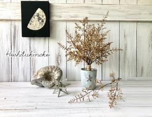 星月猫★「ナンテンの蕾のみで作ったシャビーシックなスワッグ中サイズ」おまけ小枝2本付 ドライフラワー 花束