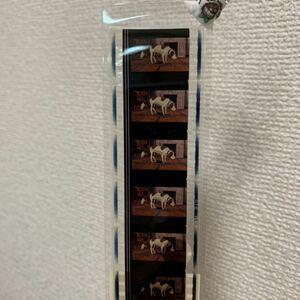 魔女の宅急便 フィルムブックマーカー スタジオジブリ 検ジブリ美術館