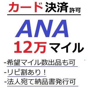 ANA120000マイル加算●国内線や国際線特典航空券予約発券や提携施設利用に/ANA12万マイル/ANA120,000マイル/ANAマイレージ/カード決済許可