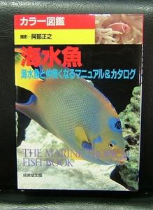 カラー図鑑 海水魚 海水魚と仲良くなるマニュアル&カタログ