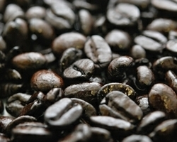 アイスコーヒーミックス(Aタイプ)10㎏ アイスコーヒー 焙煎豆 ブラジル コロンビア マンデリン プレミアム こだわりコーヒー 送料無料