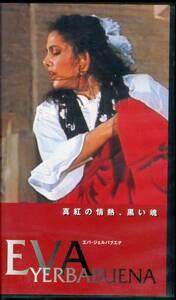 即決〈同梱歓迎〉VHS エバ・ジェルバブエナ 真紅の情熱、黒い魂 フラメンコ ダンス ビデオ◎その他多数出品中∞364
