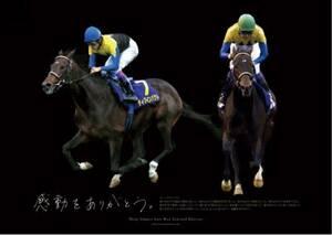 [競馬]ディープインパクト ポスター「感動をありがとう」/JRA/未使用・新品