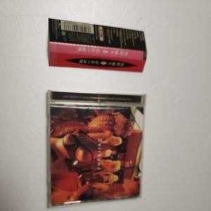 角松敏生 / 存在の証明 帯付き 12曲収録アルバム盤